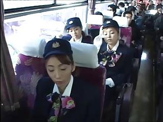 stewardesses at chum around..